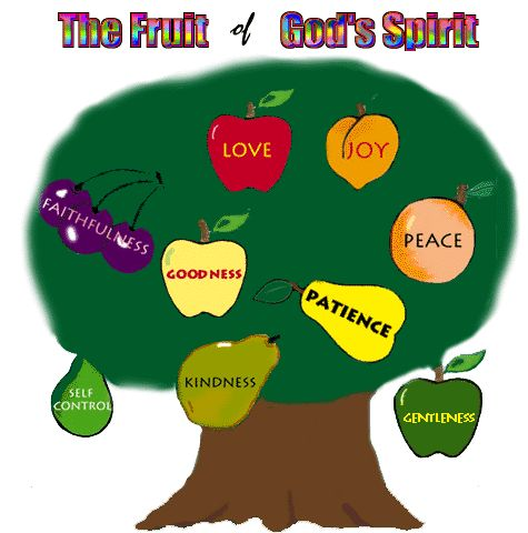 fruit jokes 9 fruits of the holy spirit and their meanings